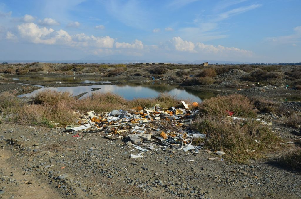 Many Aphanius lagoons are uninhabitable due to waste dumping