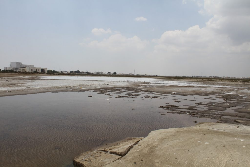 This Killifish habitat at Famagusta Bay was almost entirely dry in 2012 due to poorly planned construction works
